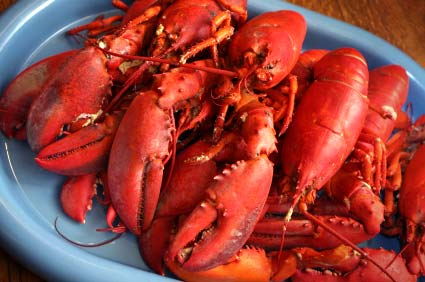 lobsters-on-tray_425px